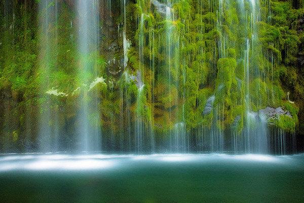 Best Nature Images 15