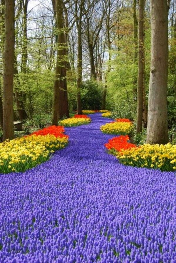 Keukenhof, the Netherlands
