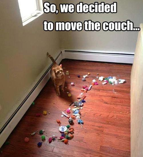 when they decided to move the couch they found...