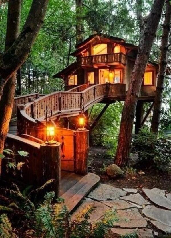 Awesome tree house ~ Australia