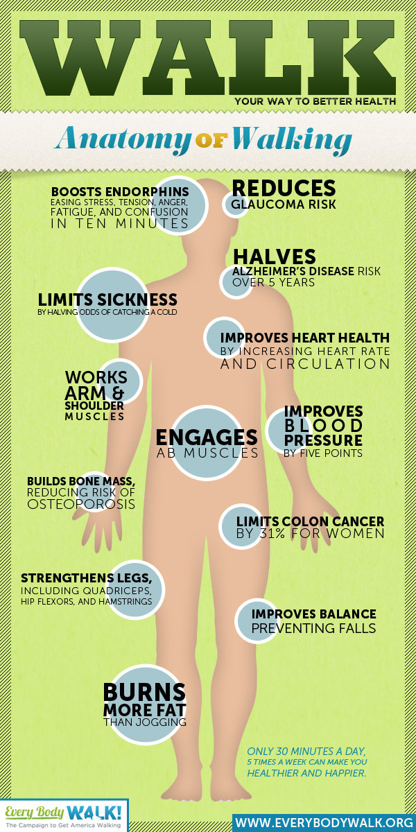 walk your way to better health anatomy of walking #infographic