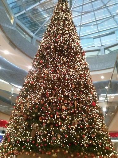 #شجرة_الميلاد في بناية فتوح الخير في #أبوظبي