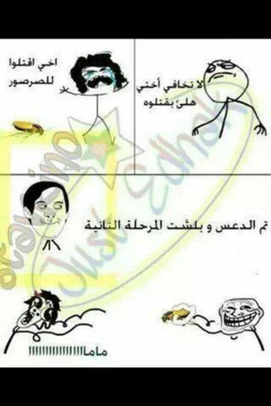 حقيقة البيت العربي #حقيقة