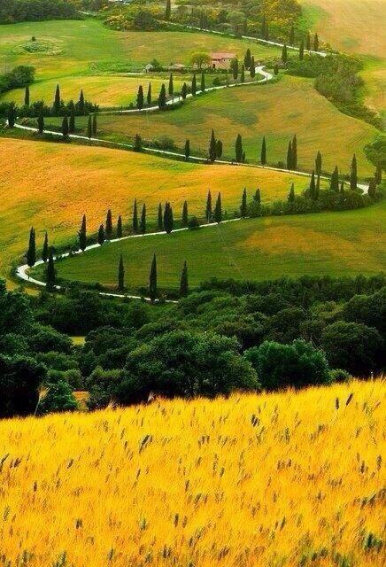 صورة من إقليم توسكانا في إيطاليا الذي يشتهر بمناظره الخلابة وبتراثه الفني الكبير..