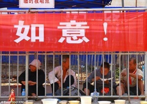 في الصين يحبسون المتسولين كما الحيوانات والهدف من ذلك هو الحد من ظاهرة التسول !