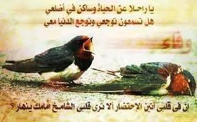 يا راحلا عن الحياة