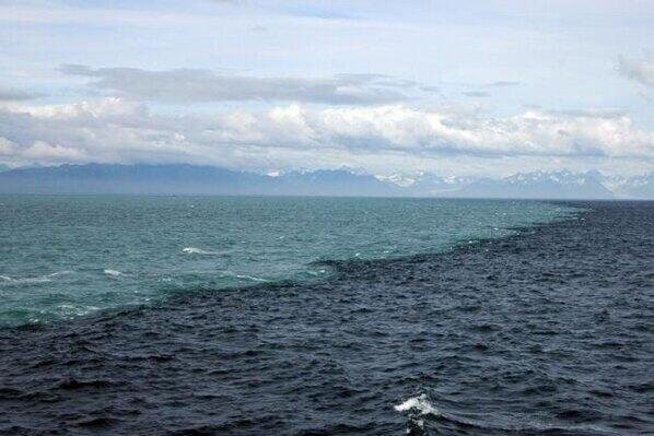 Natural phenomenon where the Baltic & North Seas meet but dont mix because of the differing density