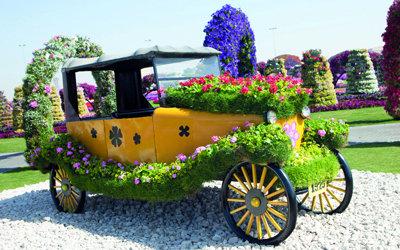Dubai Miracle Gardens #دبي ميراكل - صورة 12