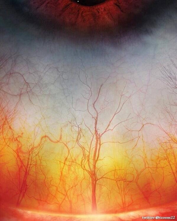 صورة مقربة عالية الدقة لعين الإنسان وكأنها غابة في فصل الخريف..!