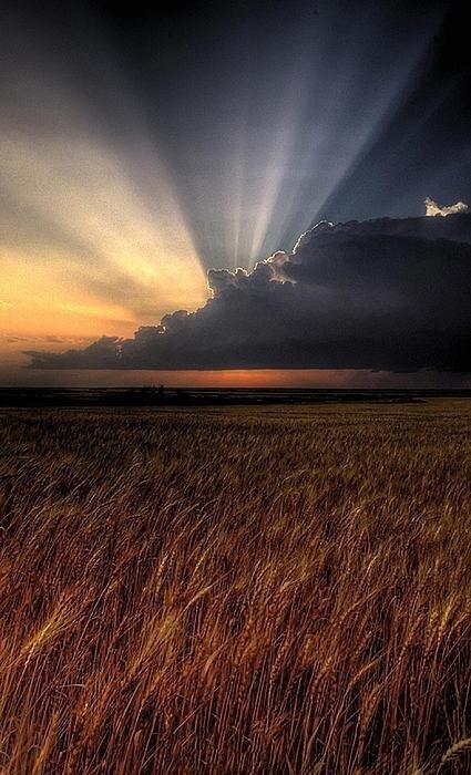 Kansas Morning