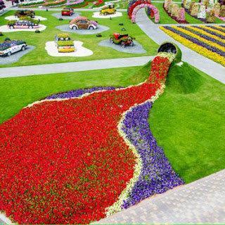 Dubai Miracle Gardens #دبي ميراكل - صورة 19