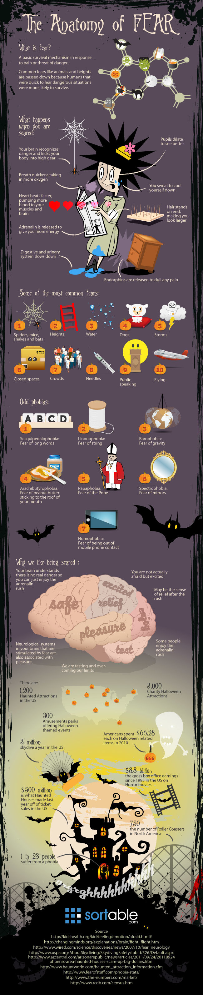 The anatomy of fear #infographic