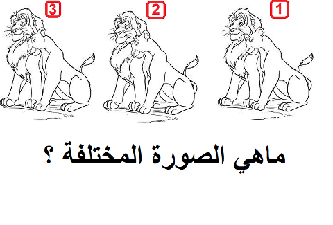 #للأذكياء_فقط احزر رقم الصورة المختلفة من الصور الثلاث #غرد_بصورة