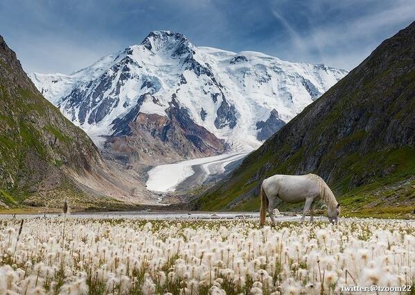 صورة رائعة جداً جداً في قرغيزستان للمصور المبدع دانييل كوردزهونوف