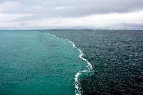 خليج الاسكا