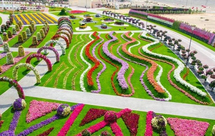 Dubai Miracle Gardens# #دبي ميراكل - صورة 3
