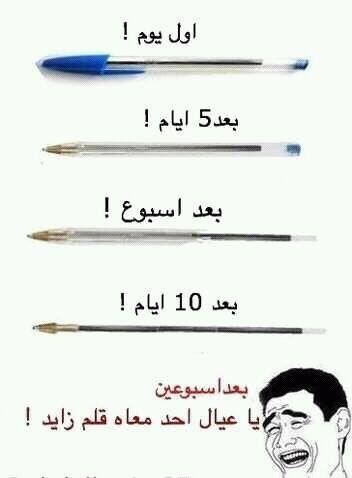 قصة القلم مع العرب