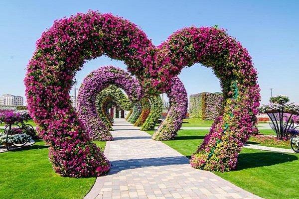 Dubai Miracle Gardens# #دبي ميراكل - صورة 4