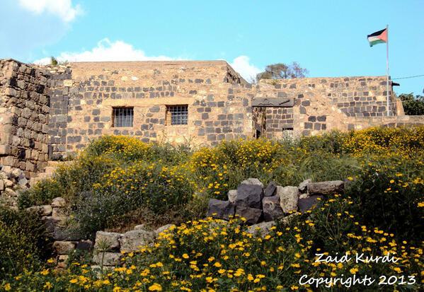 #أم_قيس في #الأردن - صورة 29