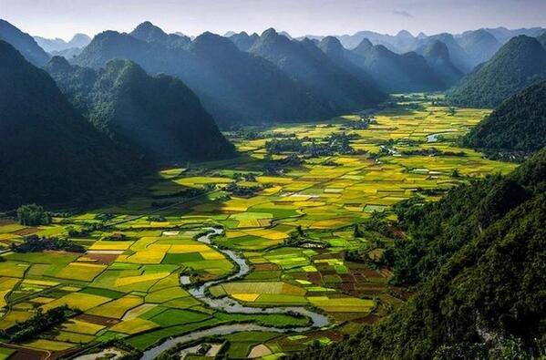 هذه فيتنام