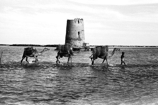 مدخل #أبوظبي في الماضي (مكان جسر المقطع حاليا) #تاريخ
