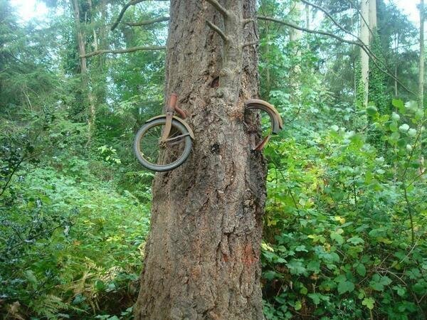 In 1914, a boy chained his bike to a tree to fight in the war.