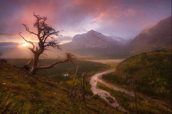 Best Nature Images 20