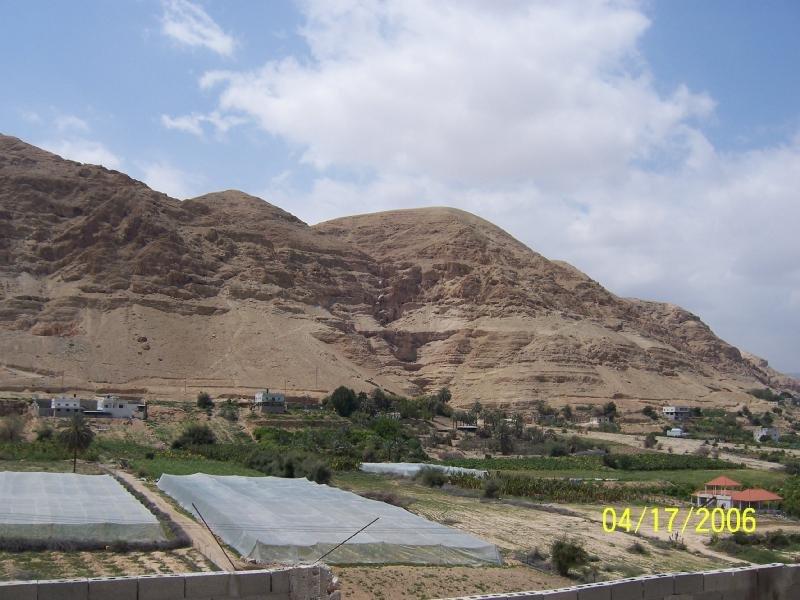 حقول زراعية محيطة بالمدينة اريحا