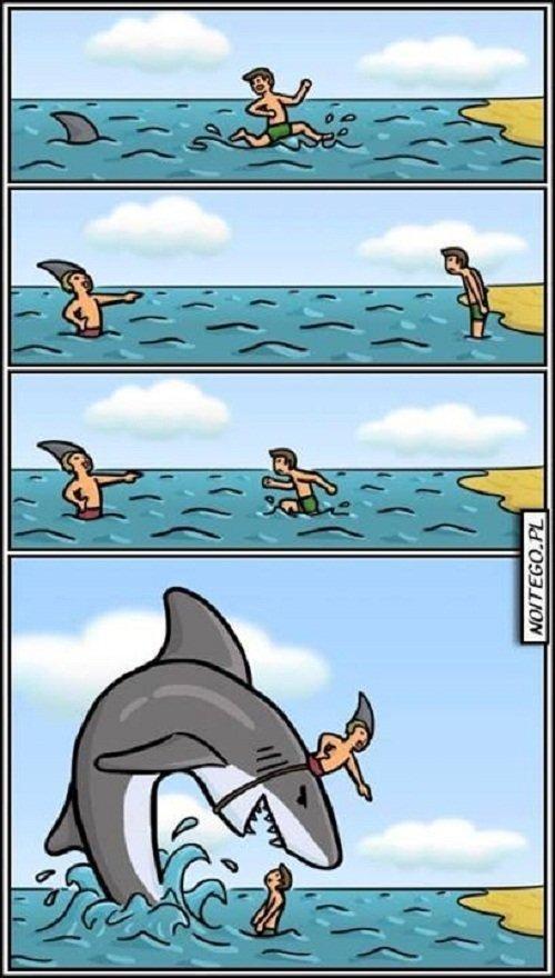 القرش الحدق