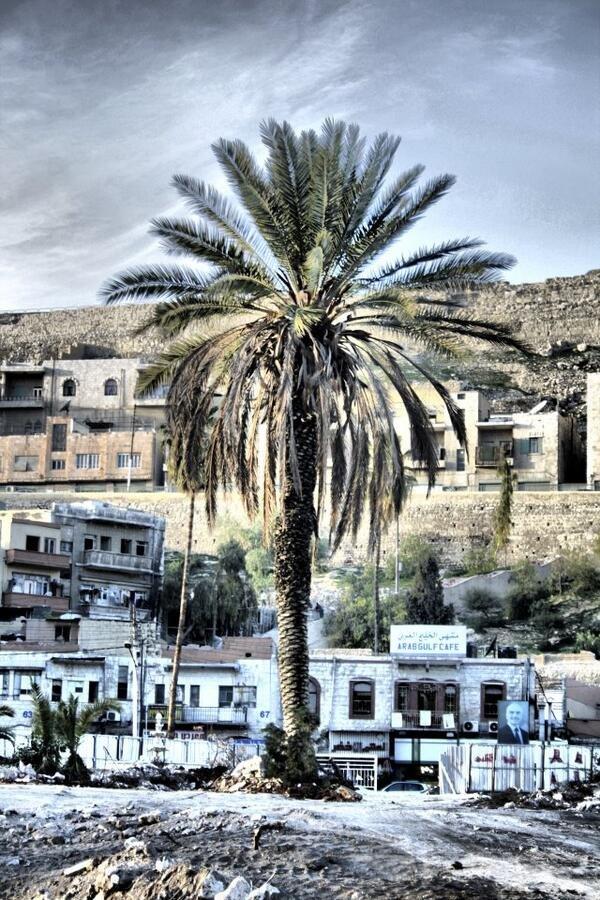صور منوعة لمدينة #عمان #الأردن - صورة 119