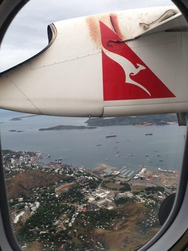 أفاعي على جناح طائرة يصورها أحد المسافرين