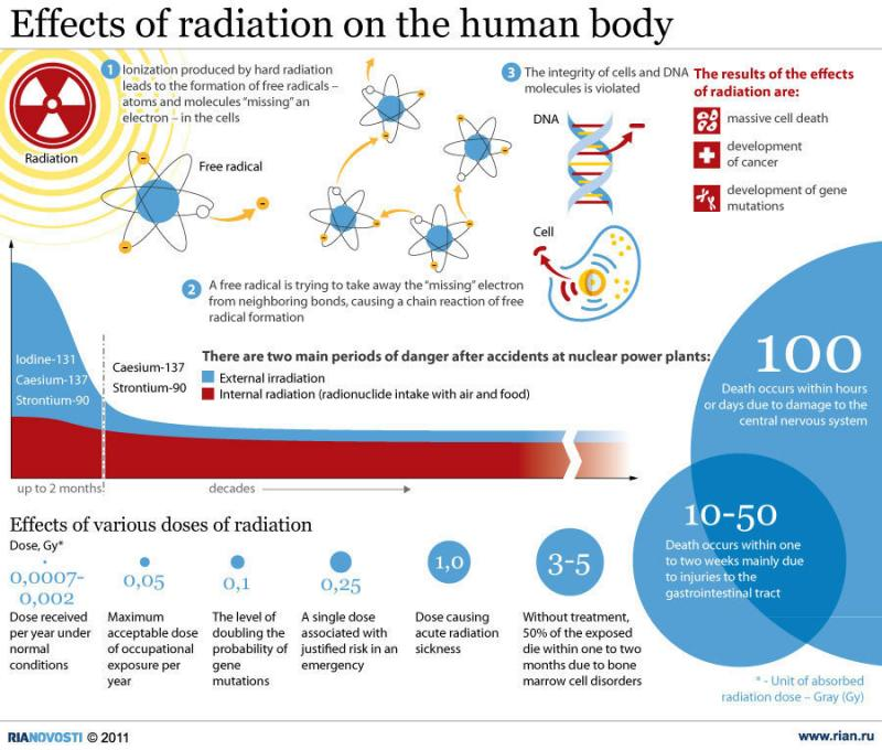 Effects of radiation on the human body #infographic
