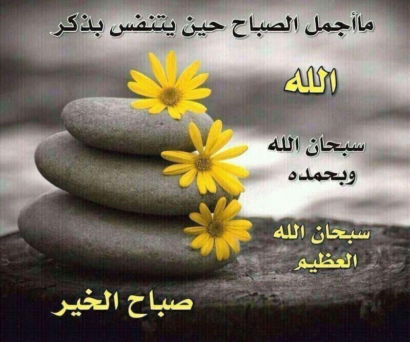 #صباح_الخير ما أجمل الصباح حين يتنفس بذكر الله