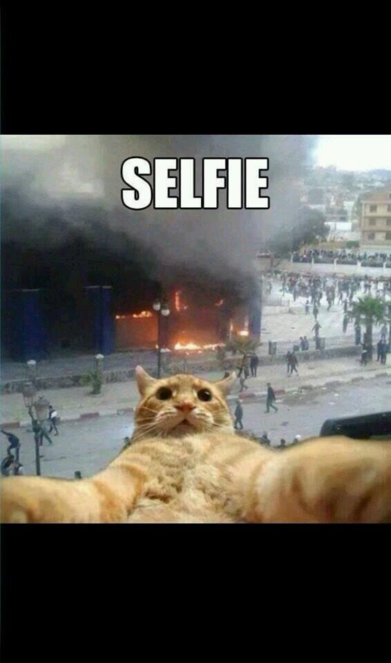 شو ما يصير البس بده يطقع ال Selfie