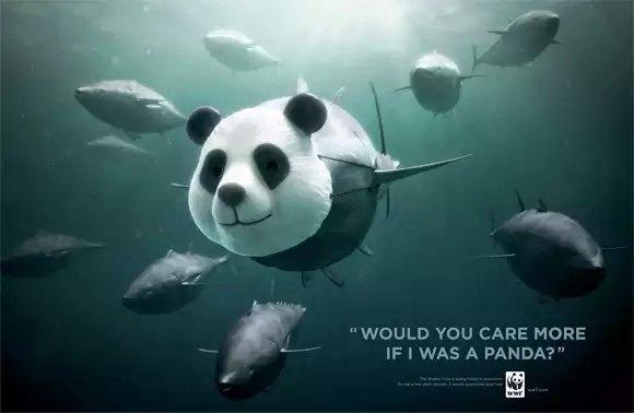 اعلان مبدع لحملة حماية للحيوانات #اعلان