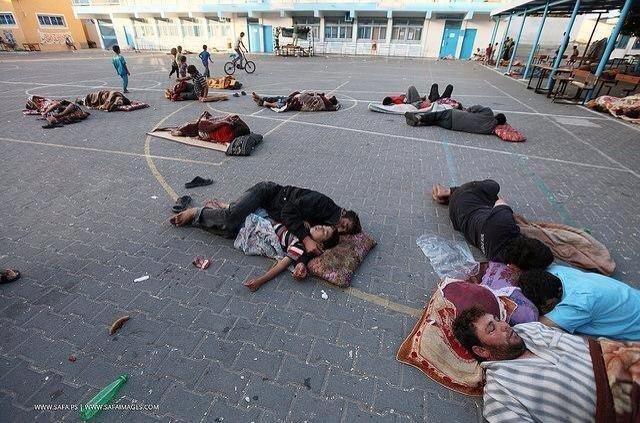 بعد أن قصف الصهاينة منازلهم، لجأَ الفلسطينيون للمدارس عوضًا عن منازلهم التي تمّ قصفُها #غزة_تحت_القصف
