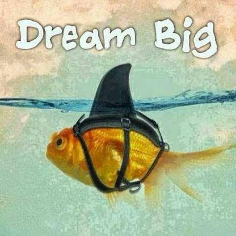الحلم الكبير