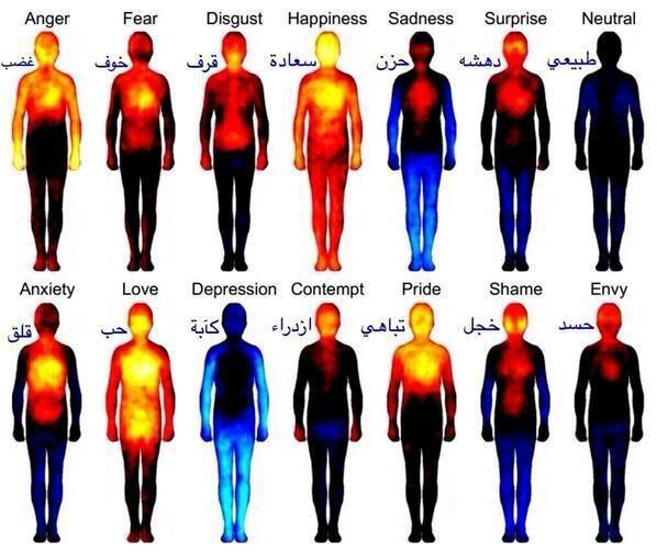 توزيع الطاقة في جسم الإنسان مع المشاعر المختلفة #صحة