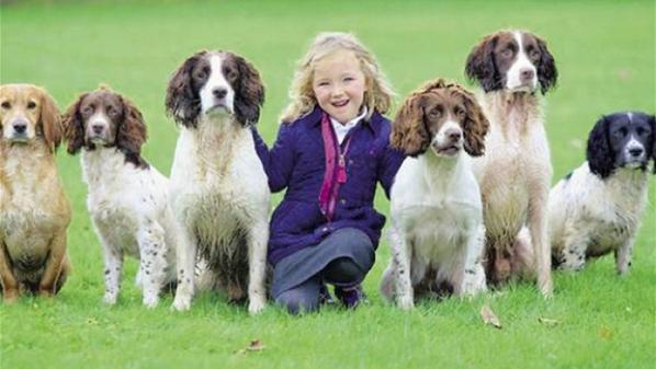 مدربة لكلاب الصيد وعمرها لا يتجاوز الـ 4 سنوات #animals #dogs