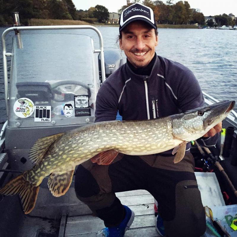 #زلاتان بارع في الصيد أيضاً