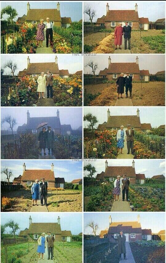 زوجان مسنان يأخذان الصورة نفسها كل موسم - الصورة الأخيرة #مؤلمة جداً !