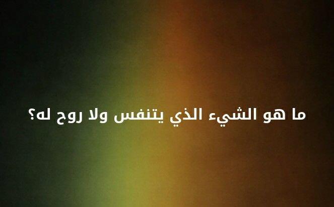 ما هو الشيء الذي يتنفس و لا روح له ؟ #لغز
