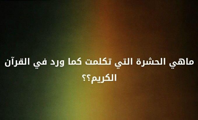 ما هي الحشرة التي تكلمت كما ورد في القرآن الكريم؟؟ #لغز