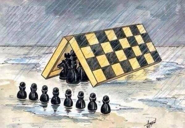 المجتمع باختصار #كاريكاتير