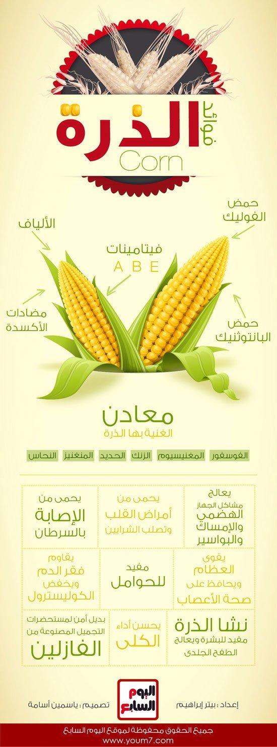 فوائد الذرة #انفوجرافيك #صحة