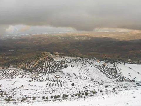 مرتفعات #السلط ويقابلها الأغوار في #الأردن #عاصفة_هدى