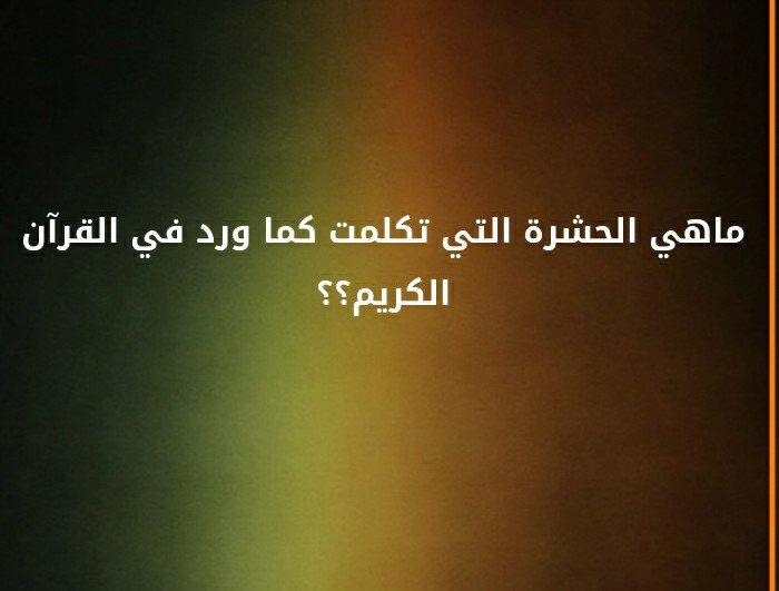 ما هي الحشرة التي تكلمت كما ورد في القرآن الكريم ؟#لغز