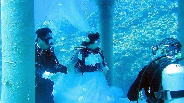 صور زفاف مثير للغرابه والدهشه الزفاف تحت الماء #غرد_بصوره صوره رقم 1