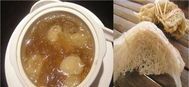 حساء #عش الطيور انواع أكلات #مقززة حول العالم صوره رقم 4 #غرد_بصوره #مطاعم #اكلات