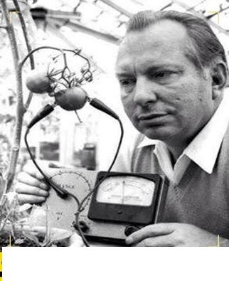 """قام \""""رون هابارد\"""" باختراع جهاز يمكنه من قياس درجة الألم عند الطماطم ، وقد استنتج أن الطماطم تصرخُ ألمًا عند قطعها !#سبحان الله"""